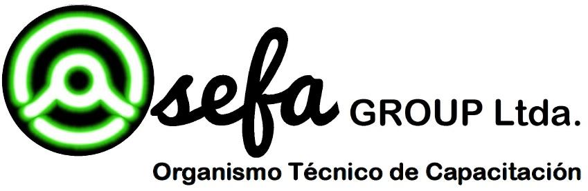 Logo Asefa Group Limitada