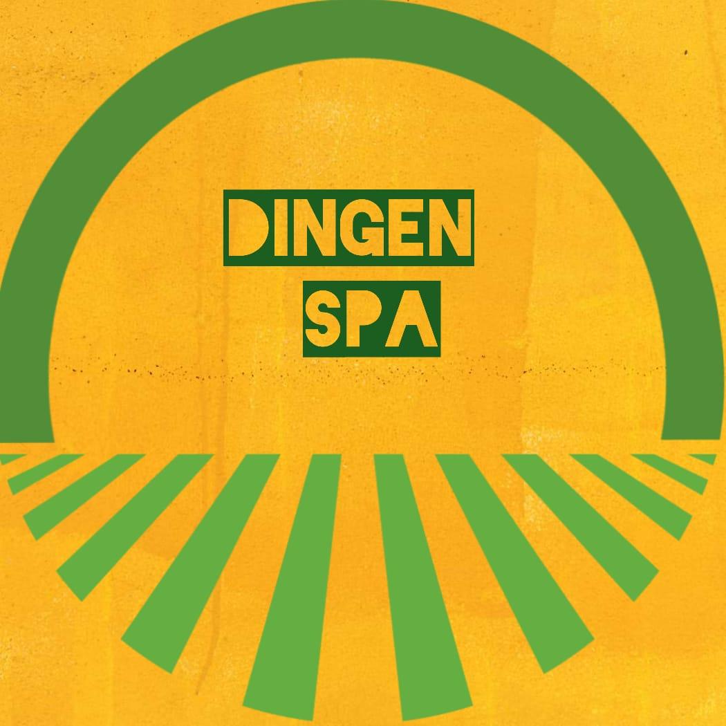Logo Dingen Capacitaciones Spa
