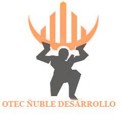 Logo OTEC Ñuble Desarrollo, Formación y Capacitación Ltda