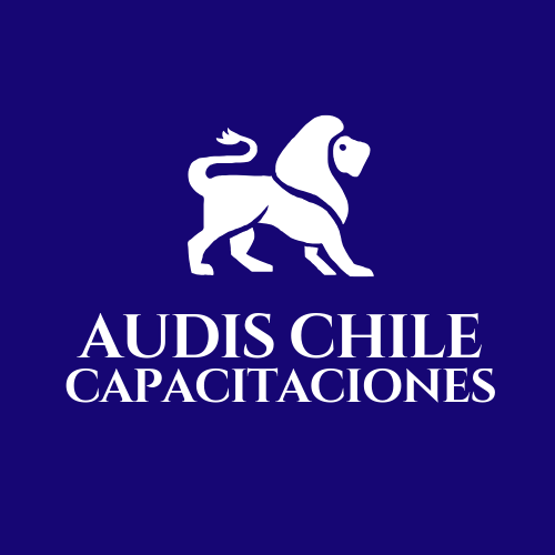 Logo AUDIS CHILE CAPACITACIONES SPA