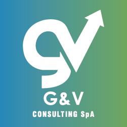 Logo G&V Consulting SpA