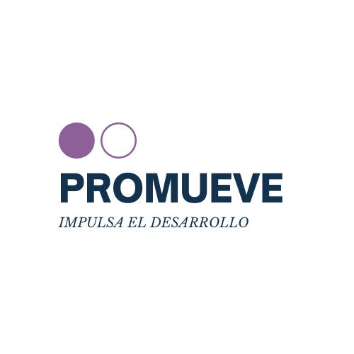 Logo ORGANISMO TÉCNICO A&P SPA