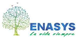 Logo ENASYS