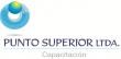 Logo Punto Superior Ltda