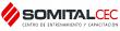 Logo Somital