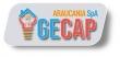 Logo Gecap Araucania Spa