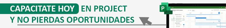 publicidad Project en Oferta