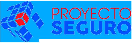 Proyecto Seguro