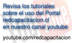 redcapacitacion en Youtube
